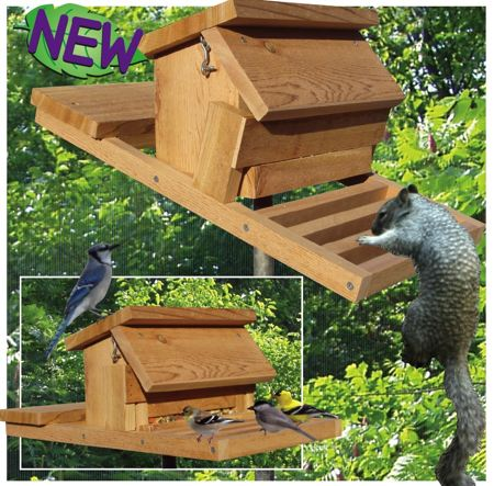 Homemade squirrel proof bird feeder plans for Homemade bird feeder plans