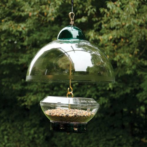 how to keep squirrels away from hummingbird feeders