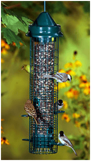 Do Squirrel Proof Feeders Work Feedingnature Com