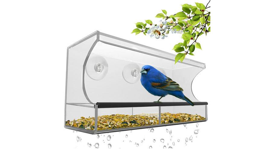 Nature's Hangout BEST WINDOW BIRD FEEDER