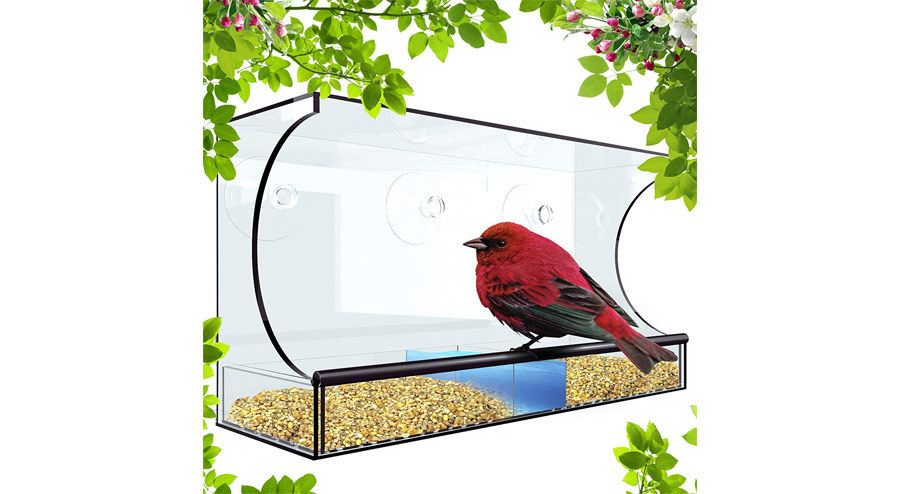Tadge Goods XL5 Outdoor Window Bird Feeder